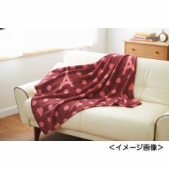 ひざ掛けラ トゥール マイクロファイバー寝具 布団 贈り物に最適