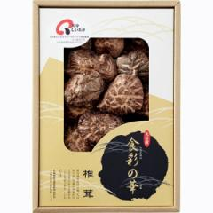 大分産 椎茸 こうしんシイタケ/LO20N