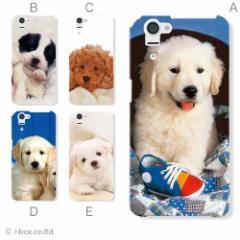 SHL23 AQUOS PHONE SERIE/アクオスフォンハードケース★アニマル☆shl23_a100_012