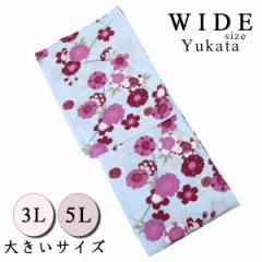 仕立て浴衣 レディース -57- 綿100% 3L 5L 水色 花柄