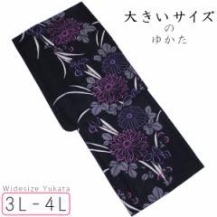 大きいサイズ浴衣  レディース -94- 綿100% 3L-4Lサイズ 167cm 菊柄 黒/マゼンタ/生成り色
