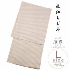 浴衣 メンズ -8- 近江ちぢみ 綿麻 Lサイズ 縦縞 洒落柿色