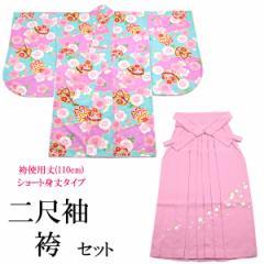 袴セット -7- 二尺袖着物/袴/長襦袢 女性用 袴専用身丈 110cm 水色/ローズ
