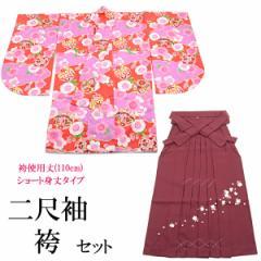 袴セット -8- 二尺袖着物/袴/長襦袢 女性用 袴専用身丈 110cm 赤/ローズ