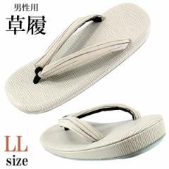 メンズ草履 -8- 雪駄 27.5cm/LL-size 波縞/灰白色