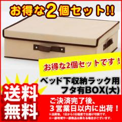 『フタ有りBOX(大)』(2個セット BSB-01BFA)幅38cm 奥行き46cm 高さ13cm 送料無料 シンプルなベッド下 収納ボックス(ベッド下 収納ラック)
