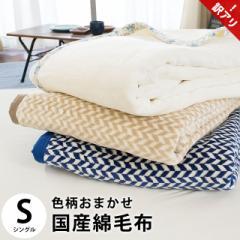 毛布 綿毛布 色柄おまかせ シングル 約140×200cm 毛羽 綿100% 掛け毛布 日本製 綿 ブランケット【訳あり 色柄込み】