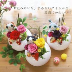 母の日 プリザーブドフラワー 父の日 ギフト 豆ねこ 誕生日プレゼント 女性 バラ 還暦祝い お礼 お祝い 花とセット ねこ ネコ