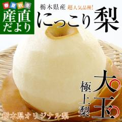 栃木県産にっこり梨 秀品 約5キロ (5玉から10玉)送料無料 なし 梨 ナシ