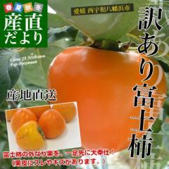 愛媛県より産地直送 JAにしうわ 富士柿 訳あり 2キロ(5玉から6玉) 送料無料 柿 かき ふじがき