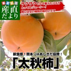 熊本県より産地直送 JAあしきた 太秋柿 3.5キロ(8玉から14玉) 送料無料 柿 かき