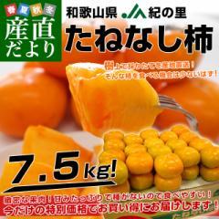 和歌山県より産地直送 JA紀の里 たねなし柿 2LからLサイズ 7.5キロ(32玉から36玉)カキ 刀根柿 平核無柿 とねがき ひらたねなしがき