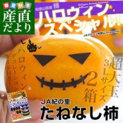 和歌山県より産地直送 JA紀の里 たねなし柿 3Lサイズ 2箱セット 合計3キロ (約1.5キロ×2箱)送料無料 カキ かき 柿  産直だより