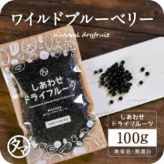 【送料無料】ワイルドブルーベリー(100g/アメリカ産/無添加)ポリフェノール豊富な野生種ブルーベリー ドライフルーツ