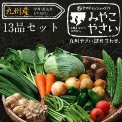 【送料無料】九州野菜セット (たまご付)九州野菜13品ベストセレクション九州の美味しい野菜の選りすぐりセット 野菜セット 新鮮野菜
