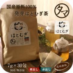 【送料無料】発芽ハトムギティーバッグ30包(国産・無添加)(煮出し◎・水出し◎)島根県出雲限定で栽培された「はと麦」だけ使用