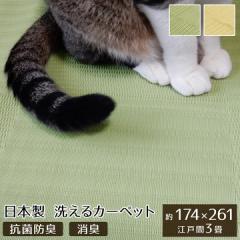 ペット ラグ 洗える 粗相 カーペット 犬 猫 ラグ  江戸間3畳  約 174 × 261    cm 水をはじく 汚れ にくい い草風   防ダニ   日本製