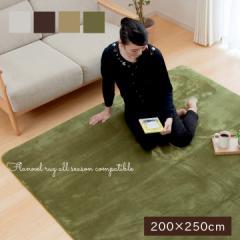 ラグ カーペット 3畳 フラン 200×250  cm ホットカーペット用   ラグ カーペット 長方形  tm