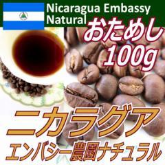 【レギュラーコーヒー豆】ニカラグア エンバシー農園 お試し100g/ナチュラル製法/カトュアイ種/フルシティ