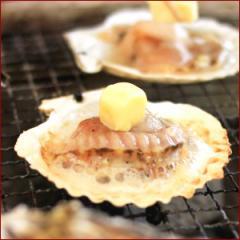 お中元 ギフト 夏 北海道産 片貝帆立(ホタテ)10枚 / 海鮮 ホタテ貝 貝 ほたて 北海道直送 内祝い