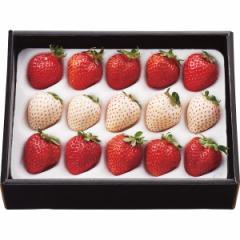 お歳暮 ギフト フルーツ 送料無料 紅白いちご(計200g) / 果物 フルーツ 国産 ギフト 贈り物 セット 詰め合わせ お取り寄せ 内祝い 御祝い