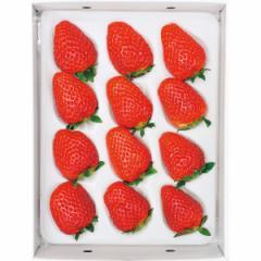 お歳暮 ギフト フルーツ 送料無料 毬姫様(400g) / 果物 フルーツ 国産 ギフト 贈り物 セット 詰め合わせ お取り寄せ 内祝い 御祝い プレ