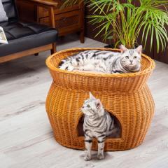 キャットハウス 2段ベッド 猫 ベット ドーム型 ペットベッド 小型犬にもおすすめ ふかふかクッション付き ラタン