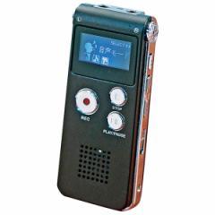小型デジタル録音機 USB充電 イヤホン付属