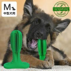 犬用歯ブラシ 360°設計 噛んで遊びながら歯磨き 犬 歯磨き 歯みがき デンタルケア おもちゃ Mサイズ 中型犬用 送料無料 代金引換不可