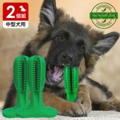 犬用歯ブラシ 360°設計 噛んで遊びながら歯磨き 犬 歯磨き 歯みがき デンタルケア おもちゃ Mサイズ 中型犬用 2個組 送料無料 代金引換
