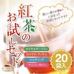 【澤井珈琲】 紅茶のお試しセット(メール便/ティーバッグ/紅茶/同梱不可)