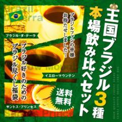 【澤井珈琲】 送料無料 王国ブラジル3種 本場飲み比べセット 珈琲150杯分福袋(コーヒー/コーヒー豆/珈琲豆)
