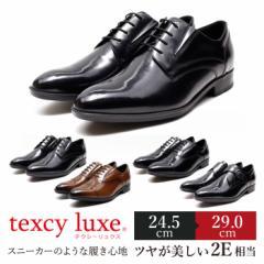 テクシーリュクス texcy luxe ビジネスシューズ 本革 メンズ 2E ブラック ブラウン ストレート プレーントゥ モンクストラップ 定番