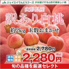 【早期予約・ご自宅用】 訳あり 桃 白桃 約2kg 山形県産 旬の品種を厳選セレクト ※9月上旬から出荷予定