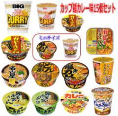 カップ麺 カレー味 一堂に集めました お手軽 半月15個セット 関東圏送料無料