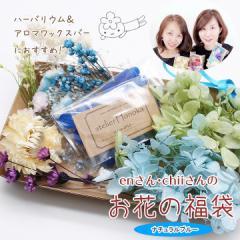 【メール便送料無料】enさんchiiさんのお花の福袋[ナチュラルブルー]★ハーバリウム花材 アロマワックスバー プリザーブドフラワー