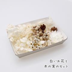 白いお花と木の実のセット★ドライフラワー ハーバリウム花材 アロマワックスバー花材 リース材料 プリザーブドフラワー アジサイ