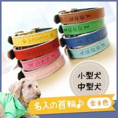 メール便 送料無料 犬 首輪 名入れ 小型犬 中型犬 愛犬 SS S M かわいい おしゃれ ネーム印刷 ポップカラーのかわいい首輪