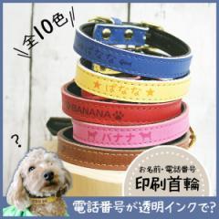 メール便 送料無料 犬 首輪 名入れ 迷子札 小型犬 中型犬 SS S M  印刷 ポップカラーのかわいい首輪