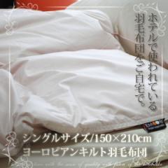 ホテル仕様 ヨーロピアンキルト羽毛布団/シングルサイズ(羽毛ふとん うもうふとん ウモウフトン 日本製 国産 あったか)【送料無料】