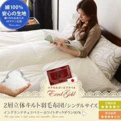 日本製 エクセルゴールドラベル 2層立体キルト 羽毛布団 シングル ポーランド産ホワイトダックダウン90% 綿100%60サテン生地 羽毛ふと