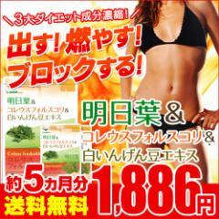 明日葉 コレウスフォルスコリ 白いんげん豆 約5ヵ月分 ダイエット サプリ 5m