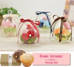 【スイーツセット】プリザーブドフラワー ドームアレンジ 母の日ギフト 母の日 お花 4カラー
