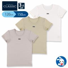 [EFC]3枚組半袖シャツ(無地・チケット)【120cm・130cm・140cm・150cm】[西松屋]