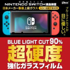 Nintendo Switch 保護フィルム 任天堂 ニンテンドースイッチ 対応 ブルーライトカット 液晶保護 フィルム ガラスフィルム  hogo-switch