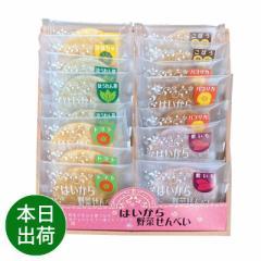 お歳暮 ギフト 和菓子 はいから野菜せんべい 11058 プチ 送料無料