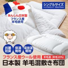 日本製 フランス産羊毛混 敷き布団(抗菌防臭 羊毛20%東レマシュロン80%)3.0kg