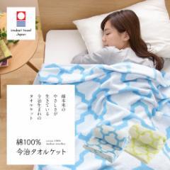 【送料無料】綿100% 今治タオルケット