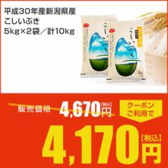 【期間限定クーポンあり】送料無料 米 平成30年産新潟県産こしいぶき 5kg×2袋/計10kg