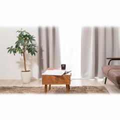 ジェネパ 1級遮光カーテン 2枚組 幅100×丈200cm